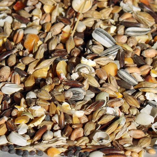 Hannes æglægningsfoder. Hønsefuldfoder med korn, ærter, majs og frø - intet andet. gmo-fri